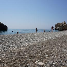 2019-sea-beach